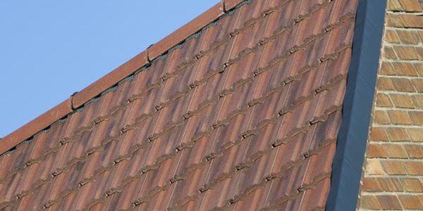 Ludlow Plus Interlocking Tile